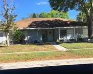 3413 Jamais Wood Way, Tampa image