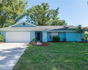 533 Humphries Road, Safety Harbor image