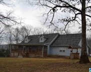 3409 Red Valley Rd, Remlap image