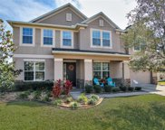20264 Ravens End Drive, Tampa image
