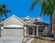17333 Blooming Fields Drive, Land O' Lakes image