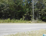 3957 Pleasant Valley Rd Unit 13 acres, Odenville image
