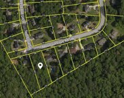 3840 Mountain Cove Road, Snellville image