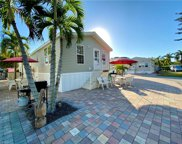 3815 Lemon Twist Loop, Bonita Springs image