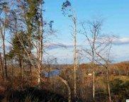 Tract 2 Auburn Ln, Dandridge image