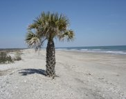 6 Lost Village Trail, Edisto Island image