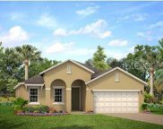 3366 Wolf Run Road, Mount Dora image