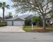 26342 Sword Dancer Drive, Wesley Chapel image