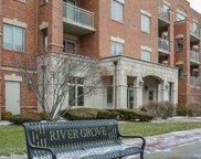 8550 Grand Avenue Unit #202, River Grove image