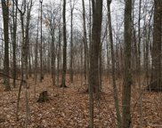 LOT C HUNT, Berlin Twp image