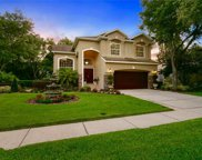 16002 Bethany Place, Tampa image