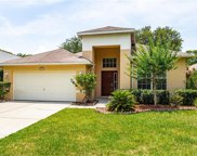 9018 Cliff Lake Lane, Tampa image