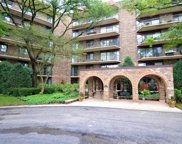 111 South Baybrook Drive Unit 109, Palatine image
