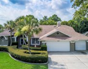 13360 Bolton Court, Spring Hill image