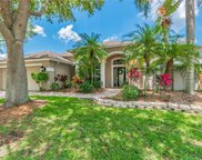 10511 Rochester Way, Tampa image