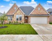 420 Blue Star Court, Burleson image