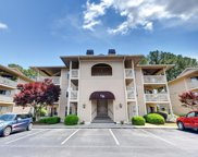 4222 Pinehurst Circle Unit I-9, Little River image