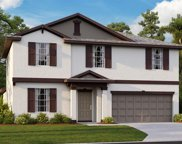 10518 Strawberry Tetra Drive, Riverview image