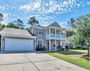 245 Sea Turtle Dr., Myrtle Beach image
