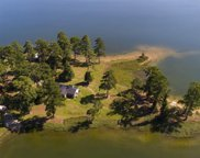 652 Lake Tide, Chapin image