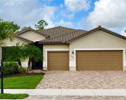 20466 Black Tree Ln, Estero image