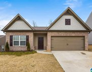 4516 Winchester Hills Way, Clay image