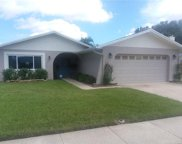 4703 Singing Stream Way, Tampa image