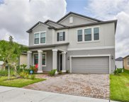 13646 Ashlar Slate Place, Riverview image