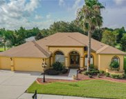 21113 Tangor Road, Land O' Lakes image