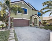 1170 Serengeti, Rockledge image