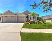 11125 Bridgecreek Drive, Riverview image