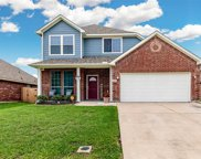1416 Cowtown Drive, Mansfield image