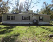 117 Royal Oaks, Crawfordville image