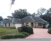 545 MOULTRIE WELLS RD, St Augustine image