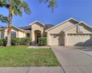 9221 Everwood Court, Tampa image