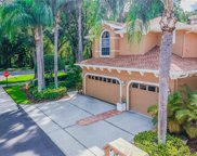 4209 Preserve Place Unit 4209, Palm Harbor image