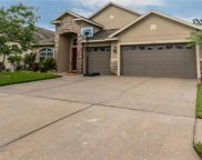 31337 Anniston Drive, Wesley Chapel image