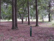 9306 Whisper Park Drive Sw, Calabash image