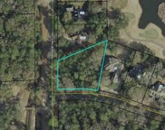 lot 217 Blue Heron Rd., Georgetown image