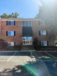 3368 Hewitt Ave Unit #101, Silver Spring image
