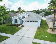 6852 Bluff Meadow Court, Wesley Chapel image