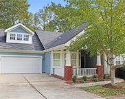 7042  Carrington Pointe Drive, Huntersville image