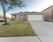 1428 Water Lily Drive, Little Elm image