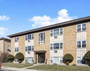 8260 West Oconnor Drive Unit 1NW, River Grove image