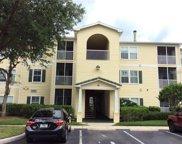 18405 Bridle Club Drive Unit 18405, Tampa image