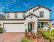 8872 Cameron Crest Drive, Tampa image