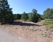 6160 W Wapiti Meadow, Pine image