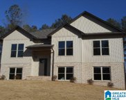 117 Heights Way, Pell City image