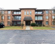 9925 Shady Lane Unit 3SW, Orland Park image
