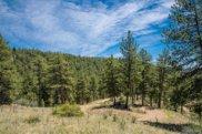 14433 Lot 3 Elk Creek Road, Pine image
